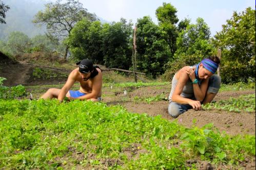01-volunteering-in-india