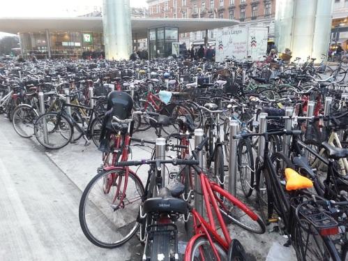 velosiped-parki